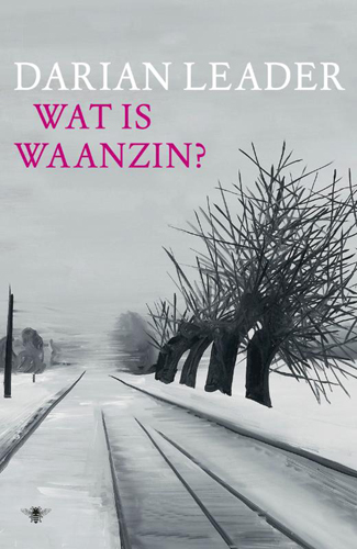 Wat is waanzin?