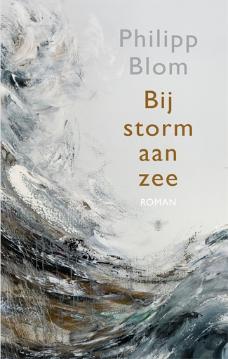 Bij storm aan zee
