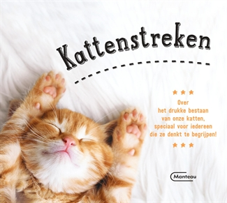 Kattenstreken