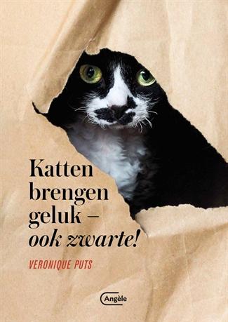 Katten brengen geluk (ook zwarte!)