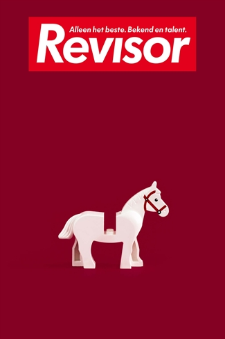 Revisor 16